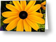 A Yellow Beauty Greeting Card