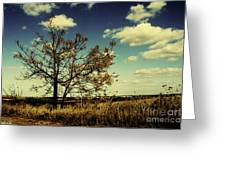 A Yellow Tree In A Middle Of A Dry Field - Wide Angle Greeting Card