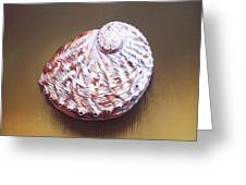 Abalone Shell - B Greeting Card