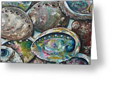 Abalone Shells Greeting Card