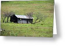 Abandoned Barn  Close Up Greeting Card