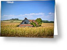Abandoned Corn Field House Greeting Card
