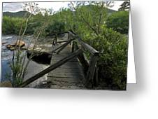 Abandoned Dock Greeting Card