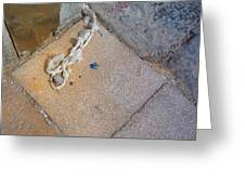 Abandoned Fishing Knot Greeting Card