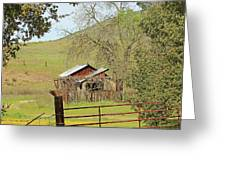 Abandoned Homestead Greeting Card