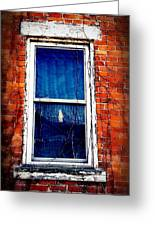 Abandoned House Window With Vines Greeting Card