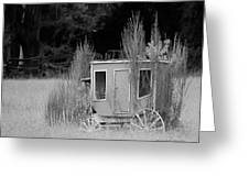 Abandoned In The Field Black And White Greeting Card