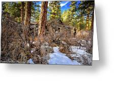 Abandoned Sprague Cabin Greeting Card