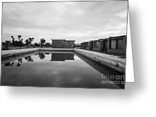 Abandoned Swimming Pool Greeting Card