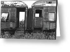 Abandoned Train Cars B Greeting Card