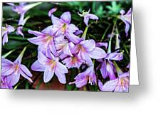 Abbey Flowers Greeting Card