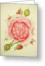 Abbi Rose Greeting Card