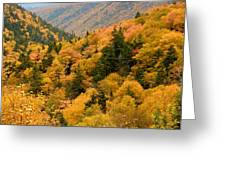 Ablaze With Autumn Glory Greeting Card
