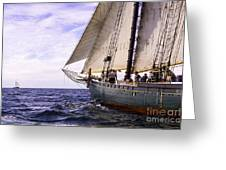 Aboard The Adventurer Greeting Card
