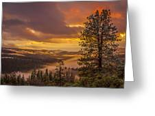 Above It All Greeting Card