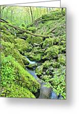 Above Moine Creek 2 Greeting Card
