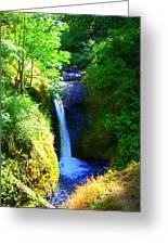 Above Onionta Falls Greeting Card