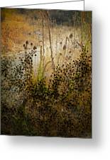 Abstract -  Burning Bush Greeting Card