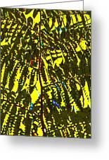 Abstract - Dappled Light Greeting Card