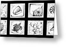 Abstract Art Contemporary Coastal Sea Shell Sketch Collection By Madart Greeting Card by Megan Duncanson