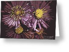 Abstract Aster Flowers Greeting Card
