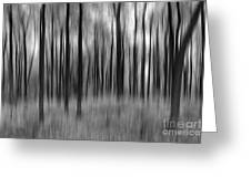 Abstract Autumn Bw Greeting Card