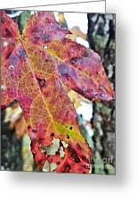 Abstract Autumn Leaf 2 Greeting Card