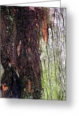 Abstract Bark 15 Greeting Card