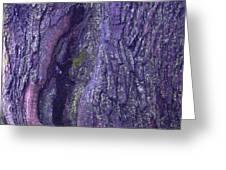 Abstract Bark 5 Greeting Card