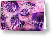 Abstract Burst Of Flowers Greeting Card