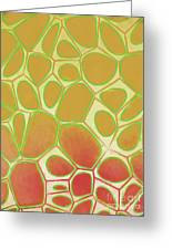 Abstract Cells 2 Greeting Card