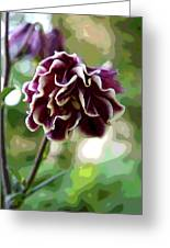 Abstract Columbine Greeting Card