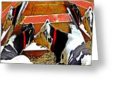 Abstract Cows Greeting Card