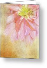 Abstract Dahlia In Pink Greeting Card