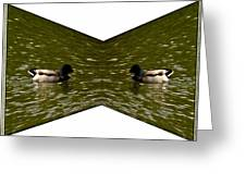 Abstract Ducks Greeting Card