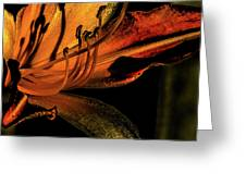 Abstract Flower Golden Red Greeting Card