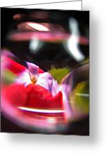 Abstract Flowers Part Two Greeting Card