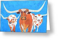 Abstract Mehndi Texas Longhorns Greeting Card
