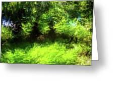 Abstract Nature 834 Greeting Card