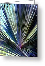 Abstract Palm Leaf Greeting Card