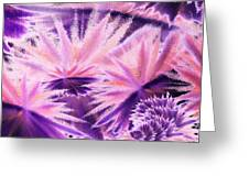 Abstract Purple Flowers Greeting Card