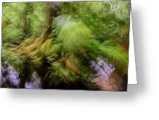 Abstract Rain Forest Greeting Card