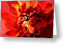 Abstract Red Chrysanthemum Greeting Card