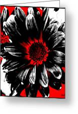Abstract Red White And Black Daisy Greeting Card