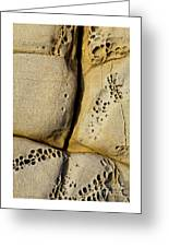Abstract Rock Pocked With Holes And Divided By Lines Greeting Card