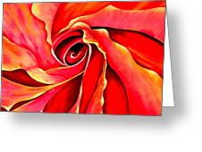 Abstract Rosebud Fire Orange Greeting Card