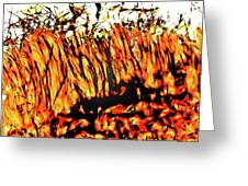 Abstract Saw Grass Iv Greeting Card