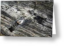 Abstract Shapes On An Old Weathered Wooden Board Greeting Card