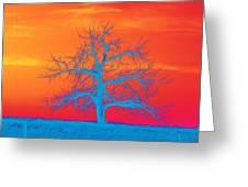 Abstract Single Tree Blue-orange Greeting Card