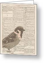 Abstract Sparrow On Dictionary Greeting Card